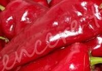 Kışlık Közlenmiş Kırmızı Biber