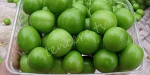 Yeşil erik bağışıklığı güçlendiriyor