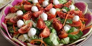 Renkli Gün Salatası